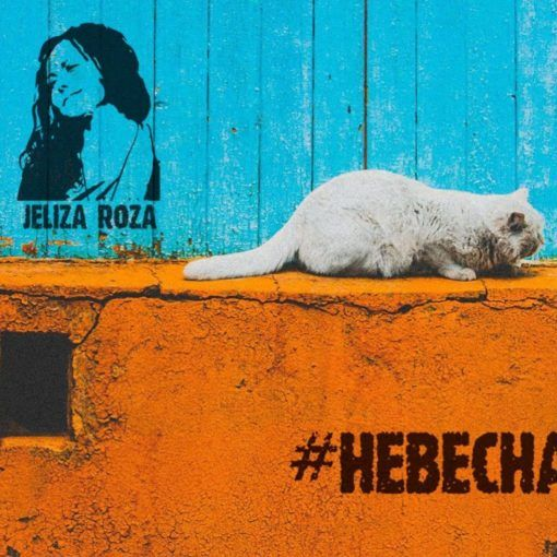 Jeliza Roza-#невесна, фанк